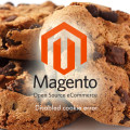 Magento: Cookies disabled Error in IE/Firefox